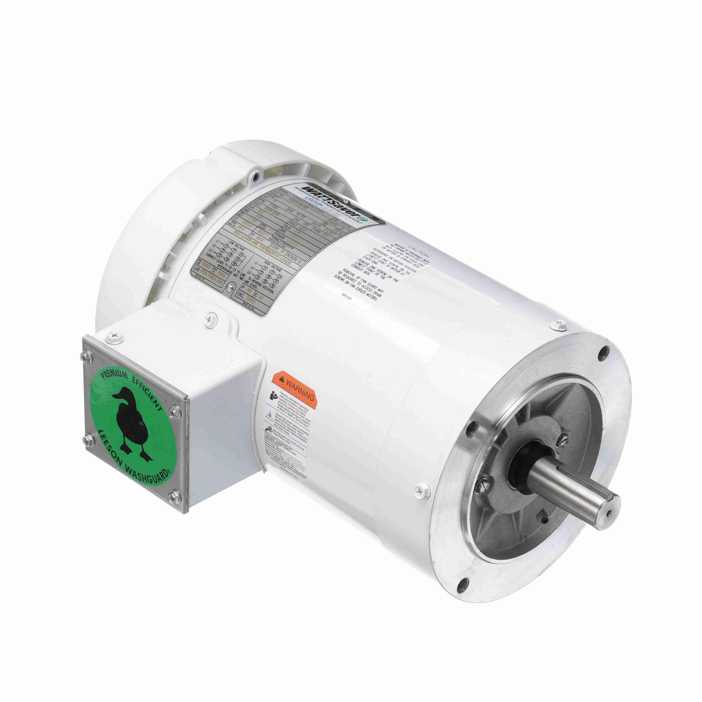 122184 00 Leeson Washguard Motor, 3 HP, 3600 RPM