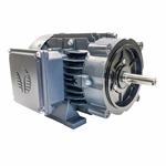 GR3-AL-TF-143TC-4-B-D-1 Techtop Motor, 1 HP