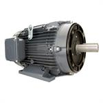 GR3-AL-TF-184TC-2-B-D-5 Techtop Motor, 5 HP